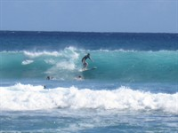 action surf 2