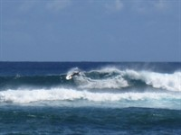 action surf 1