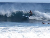 action surf 4